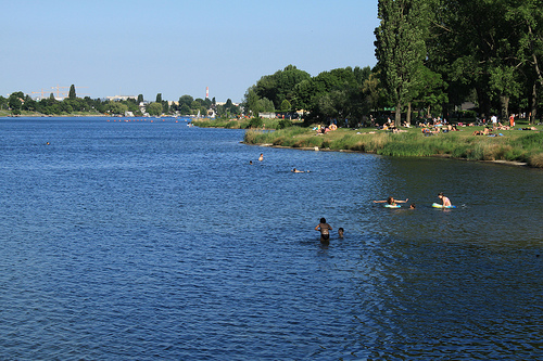 Swimming in the Old Danube