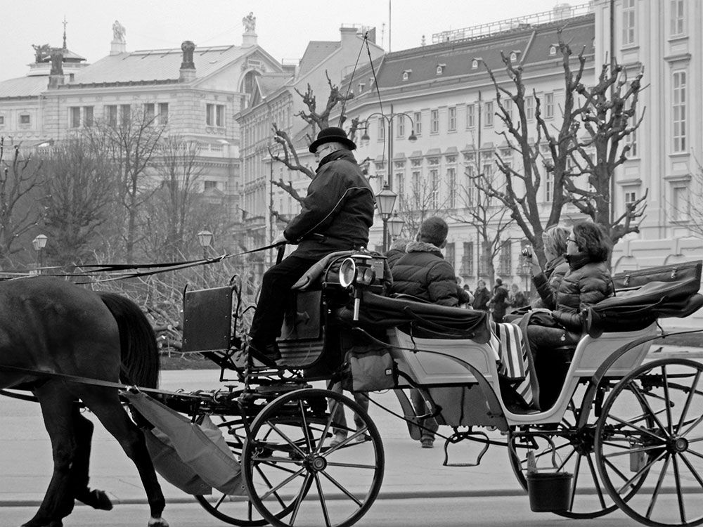 Top Things To Do In Vienna take a fiakers horse and carriage Vienna Austria