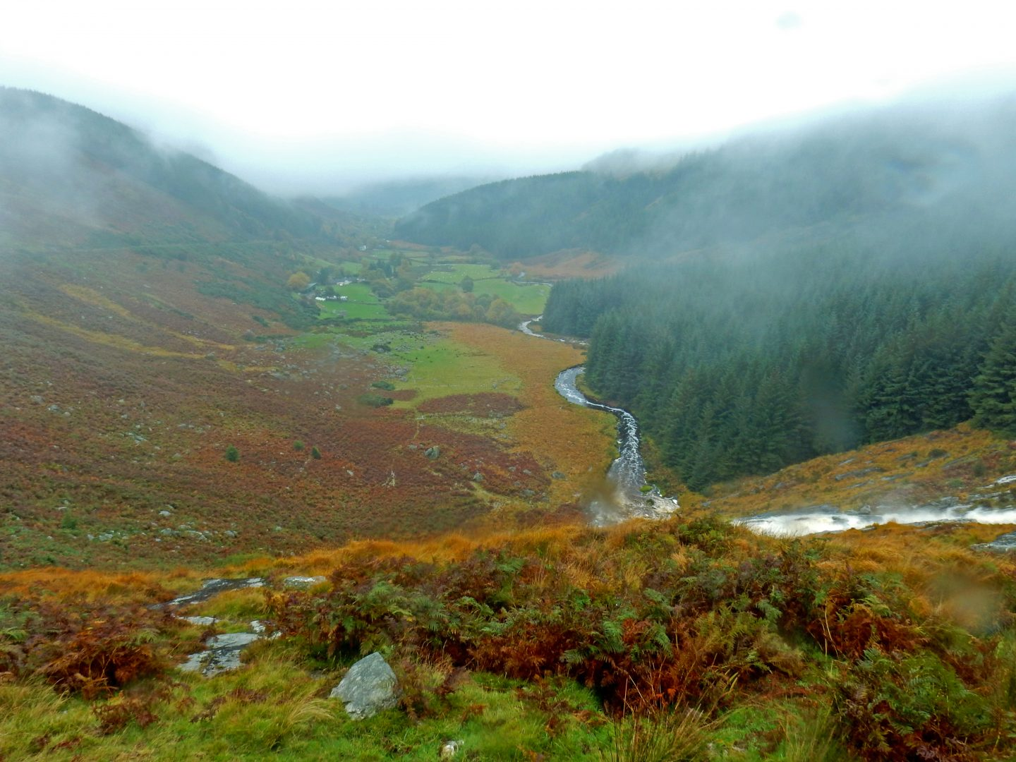 Adventure into uncharted Wicklow with Vagabond Tours!