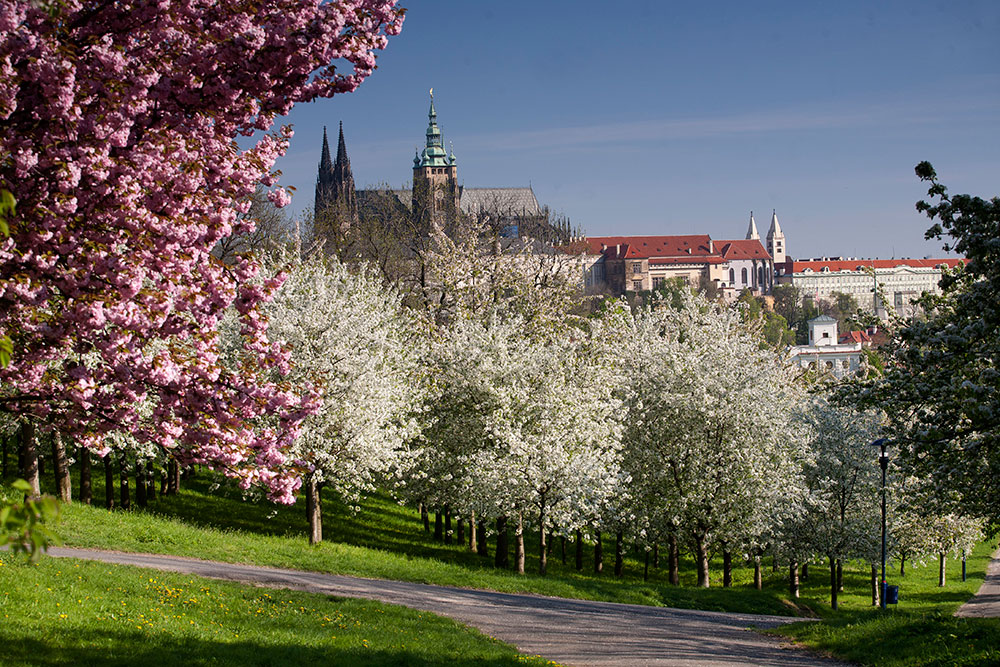 Romantic Things To Do In Prague | Prague City Tourism