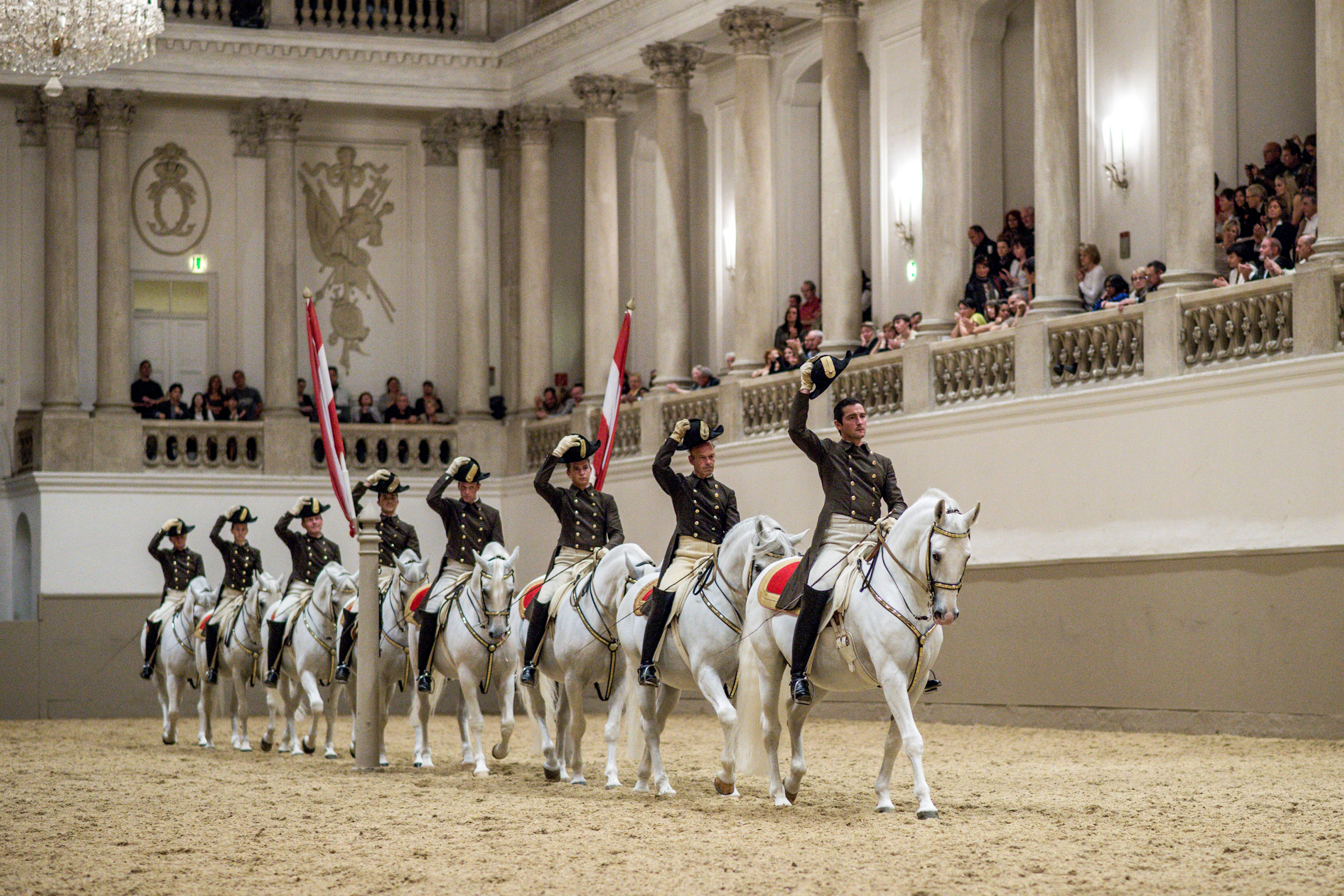 http://www.thirteen.org/13pressroom/press-release/nature-season-31-legendary-white-stallions/
